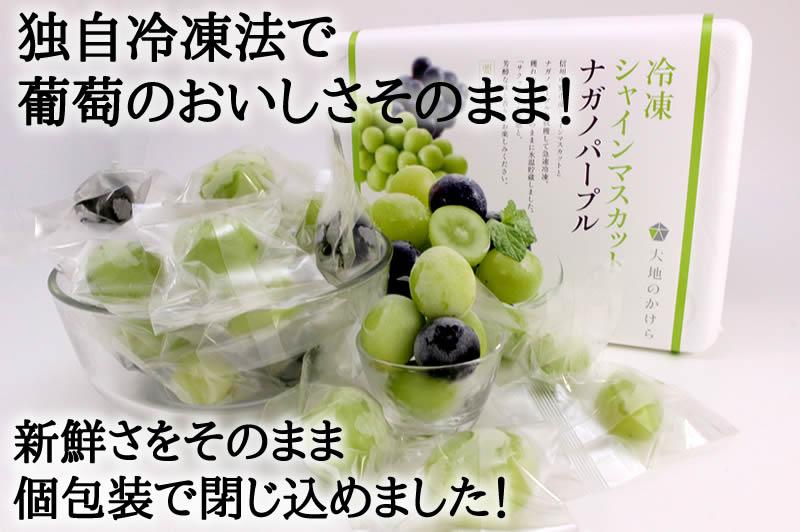 独自冷凍法で葡萄のおいしさそのまま!新鮮さをそのまま個包装で閉じ込めました!